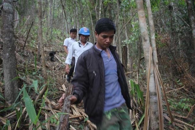 Xuân về, theo chân người dân bản địa săn chuột rừng - 1