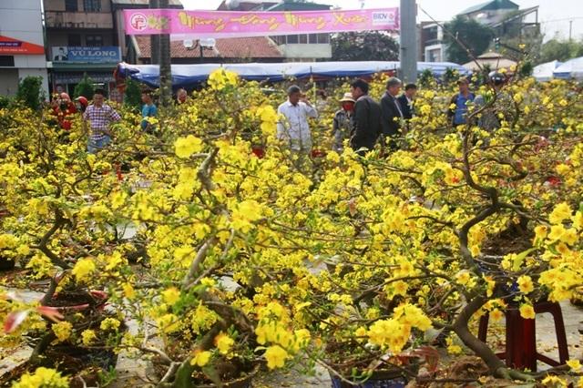Người dân Quảng Trị hối hả mang hương Tết về nhà - 15