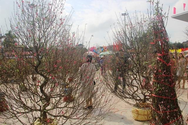 Người dân Quảng Trị hối hả mang hương Tết về nhà - 17