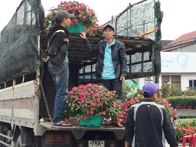 Người dân Quảng Trị hối hả mang hương Tết về nhà - 7