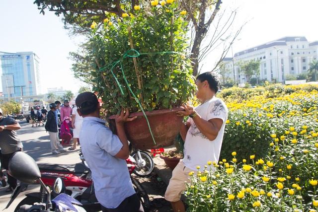 Chợ hoa Đà Nẵng 29 Tết: Quất cảnh đắt hàng, mai thưa khách - 8