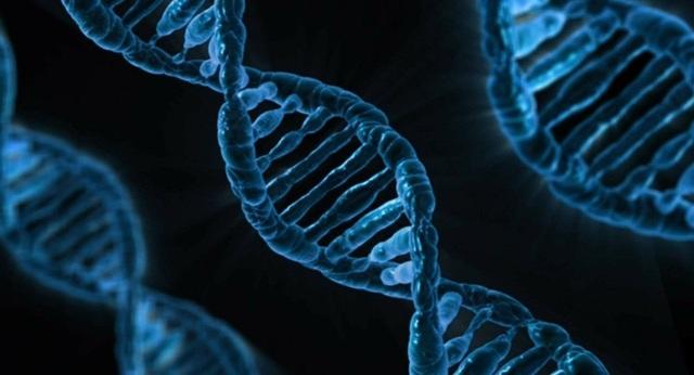 Thiếu ngủ và thức giấc vào ban đêm có nguy cơ làm hỏng cấu trúc DNA  - 1
