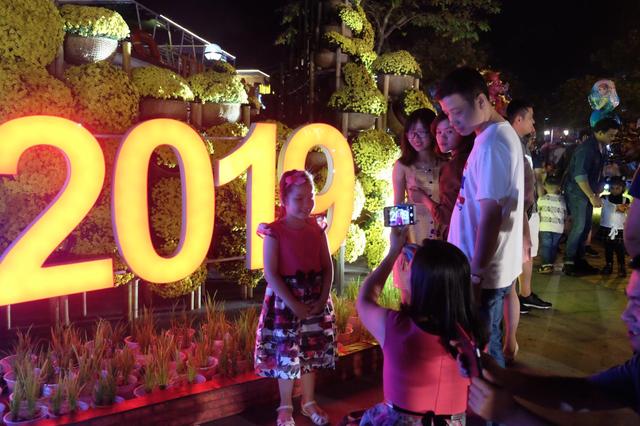 Pháo hoa rực sáng bầu trời, chào đón năm mới Kỷ hợi  - 15