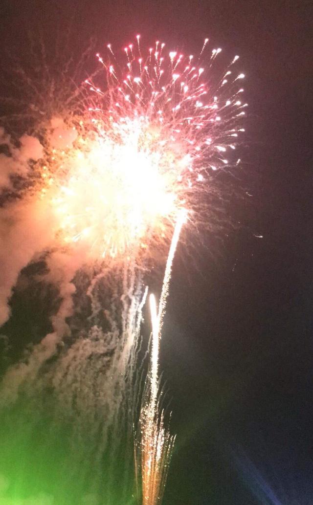 Pháo hoa rực sáng bầu trời, chào đón năm mới Kỷ Hợi - 12