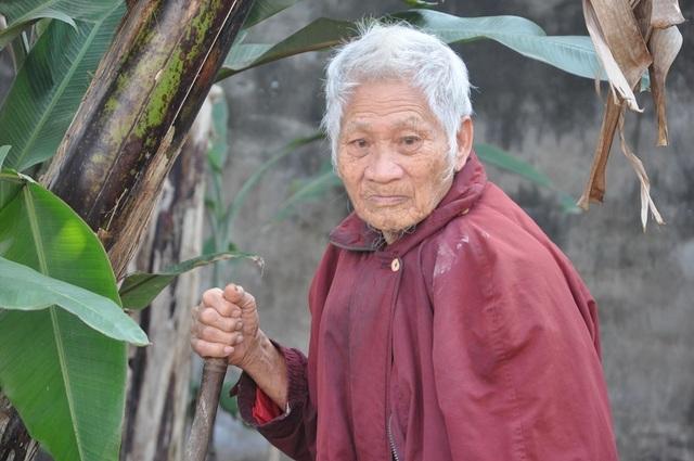 Nghẹn đắng cảnh cha già chống gậy đi tìm con trong bụi chuối - 4