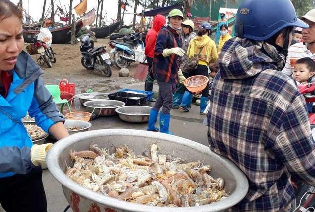 """Thanh Hoá: Ngư dân đón """"lộc biển"""" đầu năm - 9"""