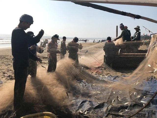 """Thanh Hóa: """"Xông"""" biển đầu năm từ 2h sáng, ngư dân trúng đậm cá - 7"""