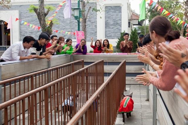 Rộn ràng trẩy hội xuân tại công viên nghìn tỷ ở trung tâm thành phố Đà Nẵng - 9