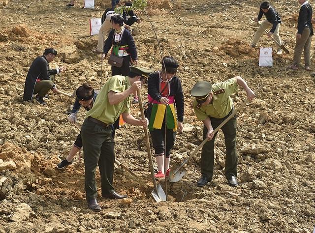 Tổng Bí thư, Chủ tịch nước Nguyễn Phú Trọng phát động Tết trồng cây - 7