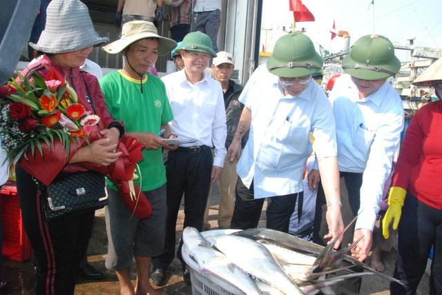 """Mẻ cá bè """"khủng"""" hơn 100 tấn của ngư dân Quảng Trị trị giá bao nhiêu? - 3"""