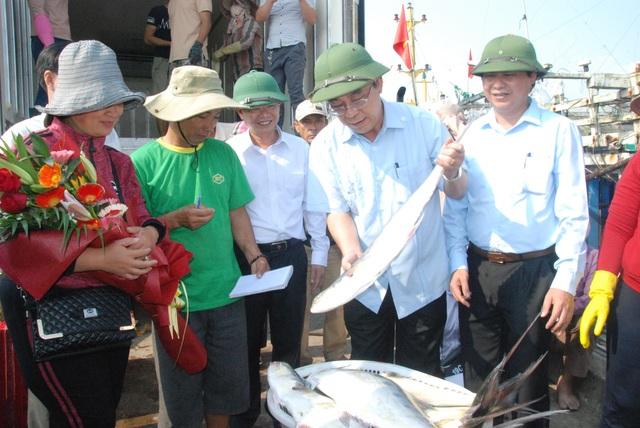 """Tận mắt nhìn mẻ cá """"siêu khủng"""" 100 tấn trong lưới ngư dân Quảng Trị - 9"""