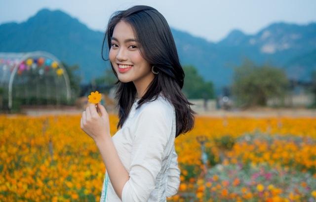 Ninh Bình: Thung lũng hoa 15ha khoe sắc - 6