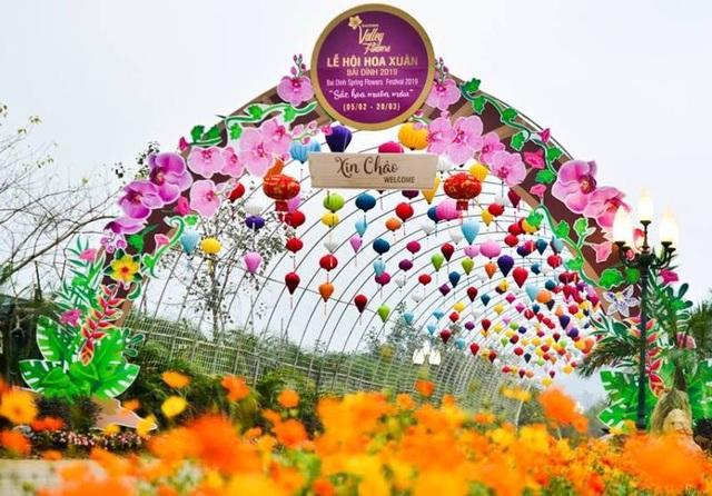 Ninh Bình: Thung lũng hoa 15ha khoe sắc - 1