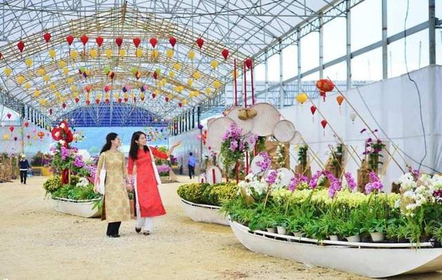 Ninh Bình: Thung lũng hoa 15ha khoe sắc - 9