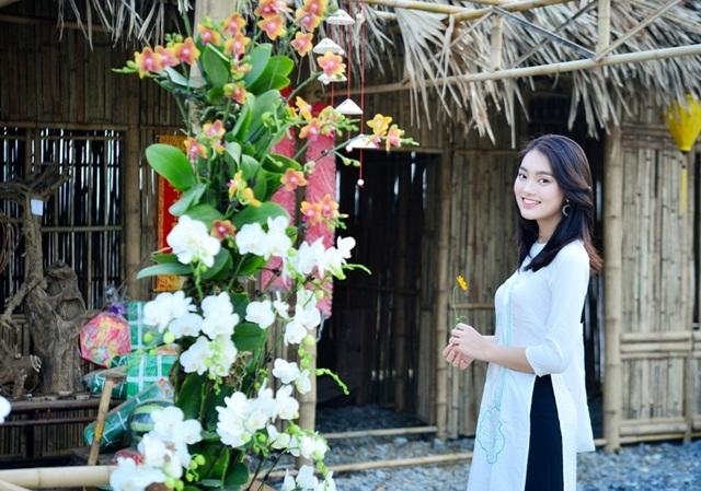 Ninh Bình: Thung lũng hoa 15ha khoe sắc - 17