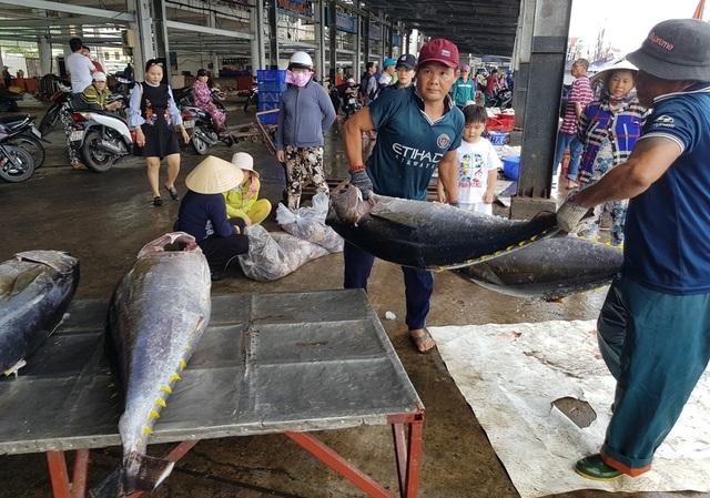 Khánh Hòa: Bỏ Tết để đi biển, ngư dân được lộc khủng đầu năm - 9