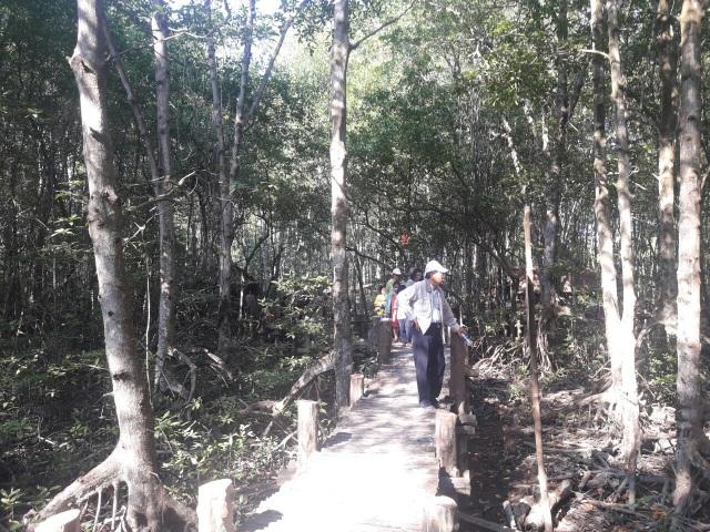 Đến Cần Giờ khám phá rừng Sác cực hoang dã  - 8