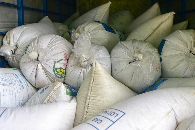 15.000 người chuyền tay phóng sinh hơn 10 tấn cá ở Hà Nội - 3