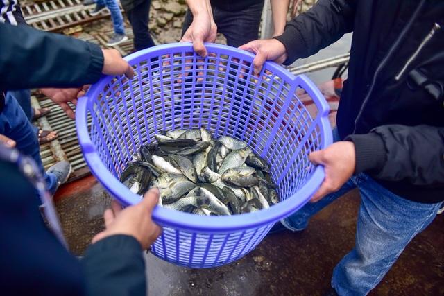 15.000 người chuyền tay phóng sinh hơn 10 tấn cá ở Hà Nội - 6