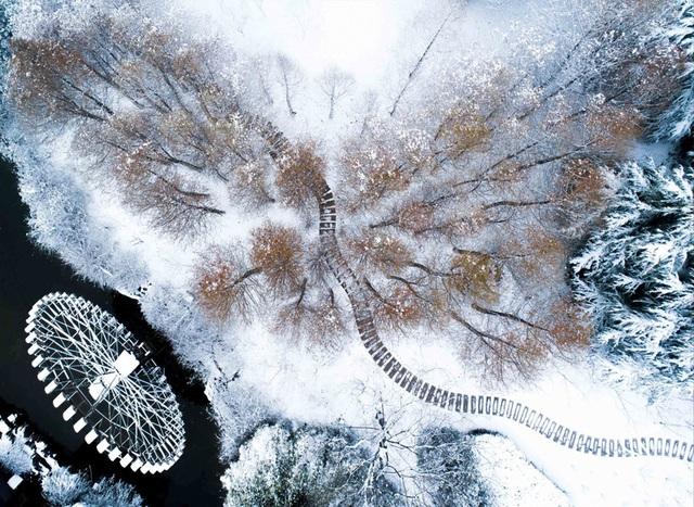 """""""Đẹp lịm tim"""" cảnh sắc trong trẻo ngày tuyết rơi dày như chốn tiên cảnh - 1"""