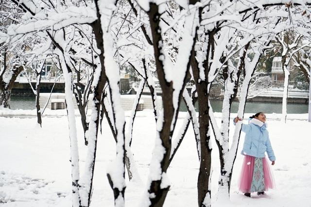 """""""Đẹp lịm tim"""" cảnh sắc trong trẻo ngày tuyết rơi dày như chốn tiên cảnh - 8"""
