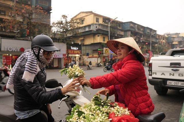 Đào phai, mai tàn, dân Hà thành chơi hoa bày đĩa nửa triệu/kg - 10..jpg