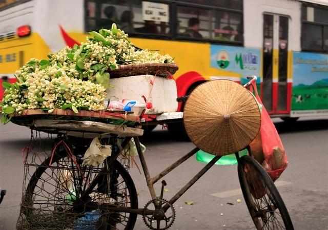 Đào phai, mai tàn, dân Hà thành chơi hoa bày đĩa nửa triệu/kg - 4