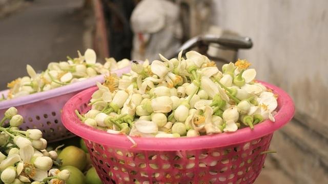 Đào phai, mai tàn, dân Hà thành chơi hoa bày đĩa nửa triệu/kg - 8