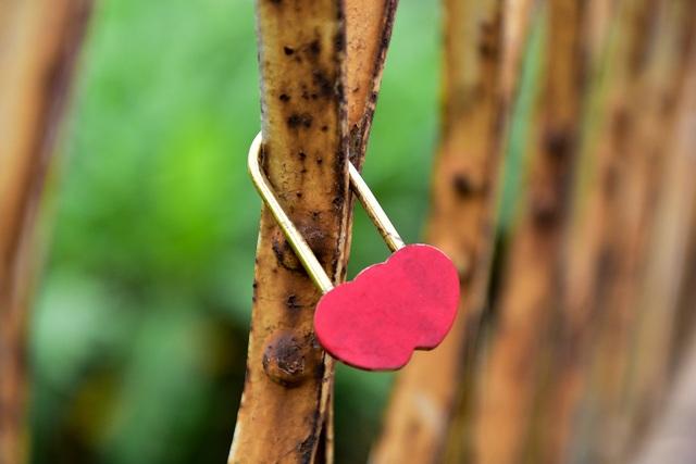 Khóa tình yêu trên cây cầu lịch sử ở Hà Nội  - 4