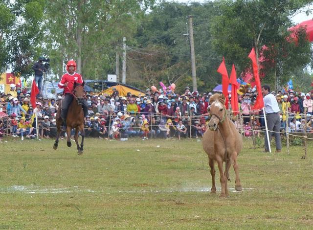 Du khách thích thú khi đến xem Hội đua ngựa Gò Thì Thùng - 4