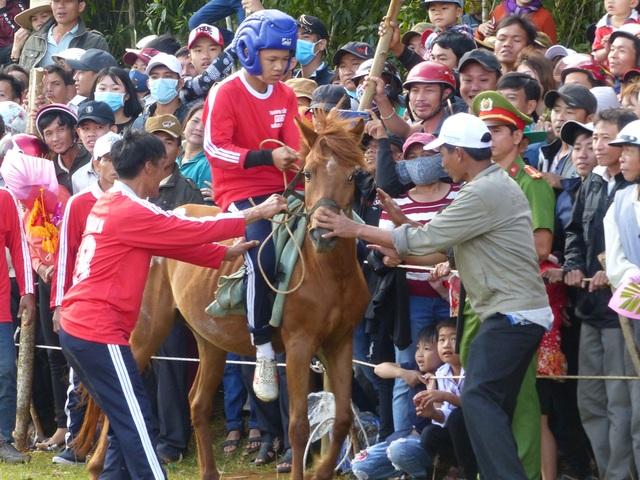 Du khách thích thú khi đến xem Hội đua ngựa Gò Thì Thùng - 2