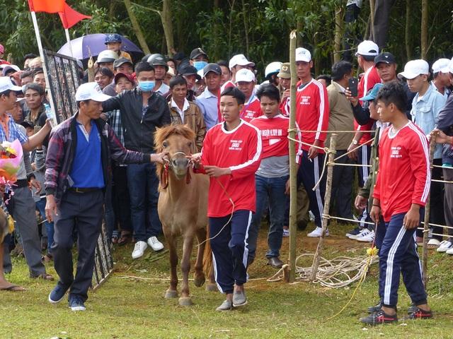 Du khách thích thú khi đến xem Hội đua ngựa Gò Thì Thùng - 1
