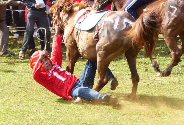 Du khách thích thú khi đến xem Hội đua ngựa Gò Thì Thùng - 6