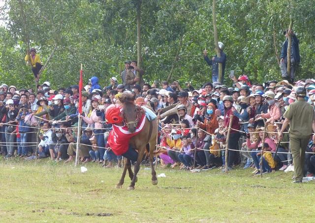 Du khách thích thú khi đến xem Hội đua ngựa Gò Thì Thùng - 5