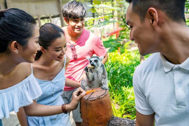 """Vinpearl Safari Phú Quốc – Trải nghiệm """"Tết mới"""",  gắn kết thiên nhiên  - 13"""