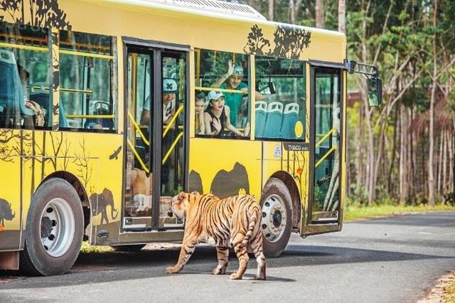 """Vinpearl Safari Phú Quốc – Trải nghiệm """"Tết mới"""",  gắn kết thiên nhiên  - 14"""