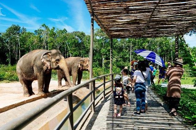 """Vinpearl Safari Phú Quốc – Trải nghiệm """"Tết mới"""",  gắn kết thiên nhiên  - 19"""
