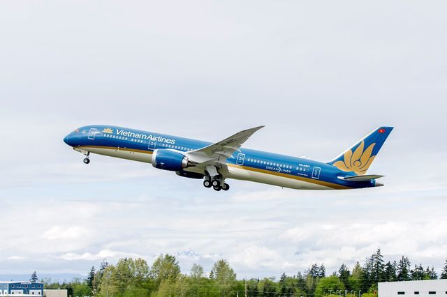 Nhận lương hàng trăm triệu mỗi tháng, phi công Vietnam Airlines vẫn bỏ đi? - 2