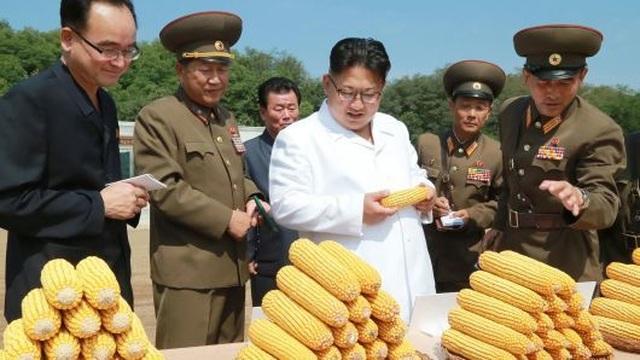 Triều Tiên lập các công ty để mời gọi vốn nước ngoài
