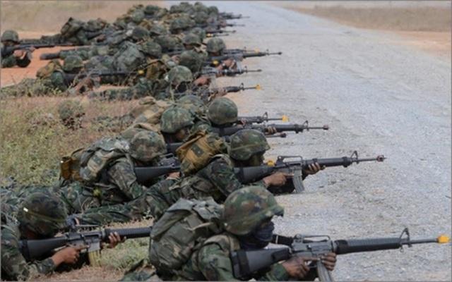 Tập trận Hổ Mang Vàng 2019: Mỹ đảm bảo an ninh với đồng minh - 1