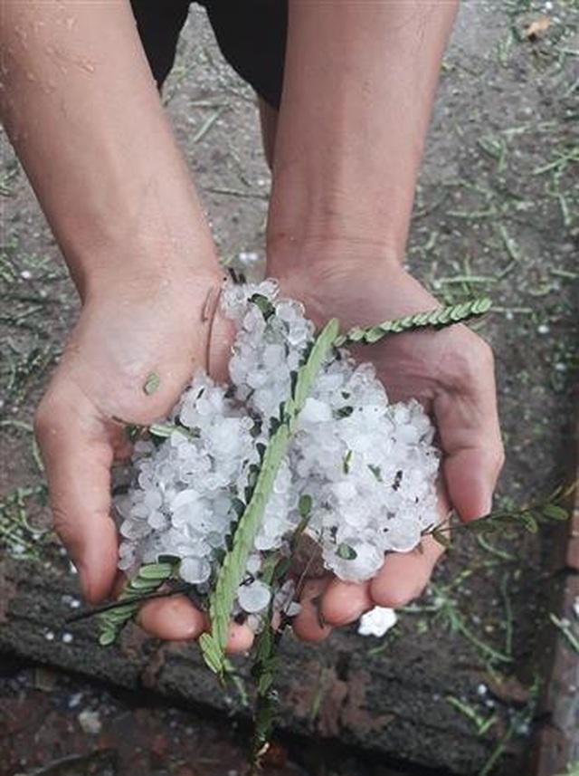 mưa đá ở Mường Nhé