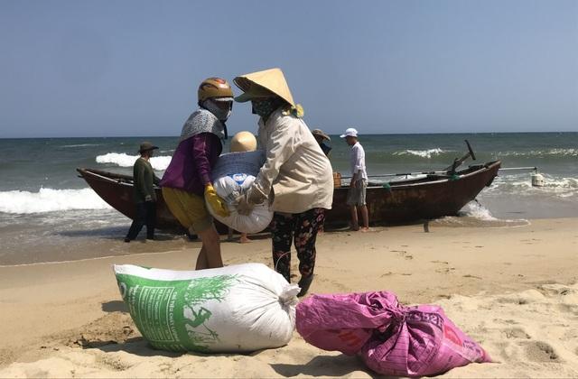 Quảng Ngãi: Kiếm tiền triệu mỗi ngày nhờ trúng mùa ốc gạo - 2