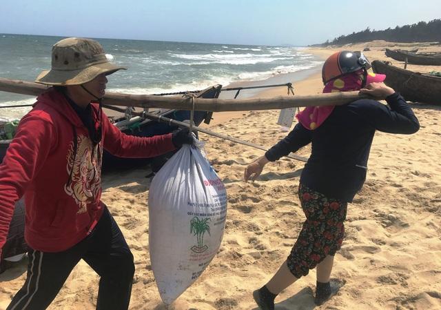 Quảng Ngãi: Kiếm tiền triệu mỗi ngày nhờ trúng mùa ốc gạo - 6