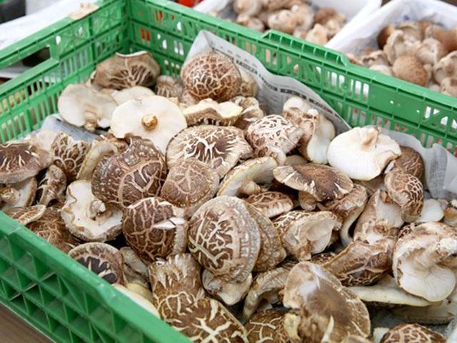 Giá gần 10 triệu đồng/kg, nấm hương Nhật được bà nội trợ Việt săn lùng - 3