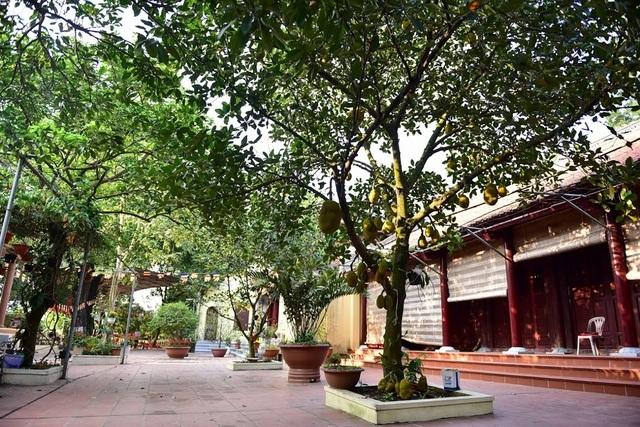 Kỳ lạ ngôi chùa không có hòm công đức, nổi tiếng với pho tượng táng độc nhất Việt Nam - 4