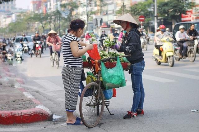 """Hoa bưởi đầu mùa xuống phố, giá 300.000đ/kg vẫn """"cháy hàng"""" - 2"""