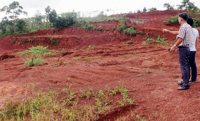 Nguyên trưởng phòng nông nghiệp xin cấp đất quốc phòng cho người thân - 1