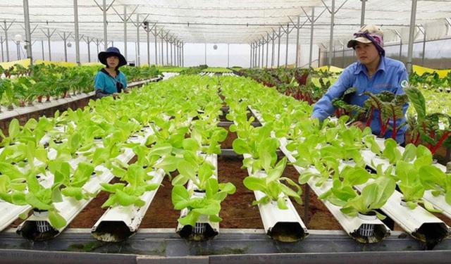 Tư vấn tuyển sinh 2019: Ngành Công nghệ Nông nghiệp làm việc như thế nào? - 1