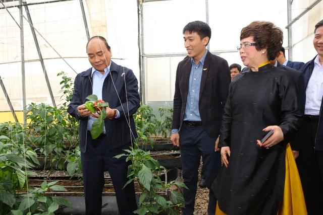 Thủ tướng Nguyễn Xuân Phúc dự lễ khánh thành Nhà máy nước tinh khiết, thảo dược và hoa quả Núi Tiên - 9