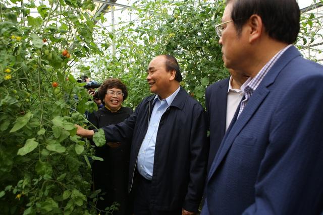 Thủ tướng Nguyễn Xuân Phúc dự lễ khánh thành Nhà máy nước tinh khiết, thảo dược và hoa quả Núi Tiên - 8